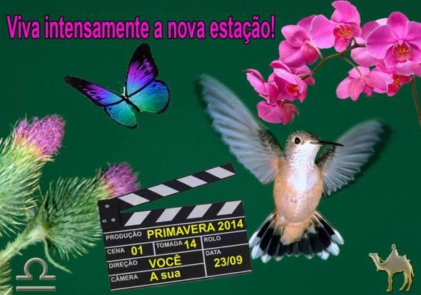 primavera2014_pedro_brasil_jr